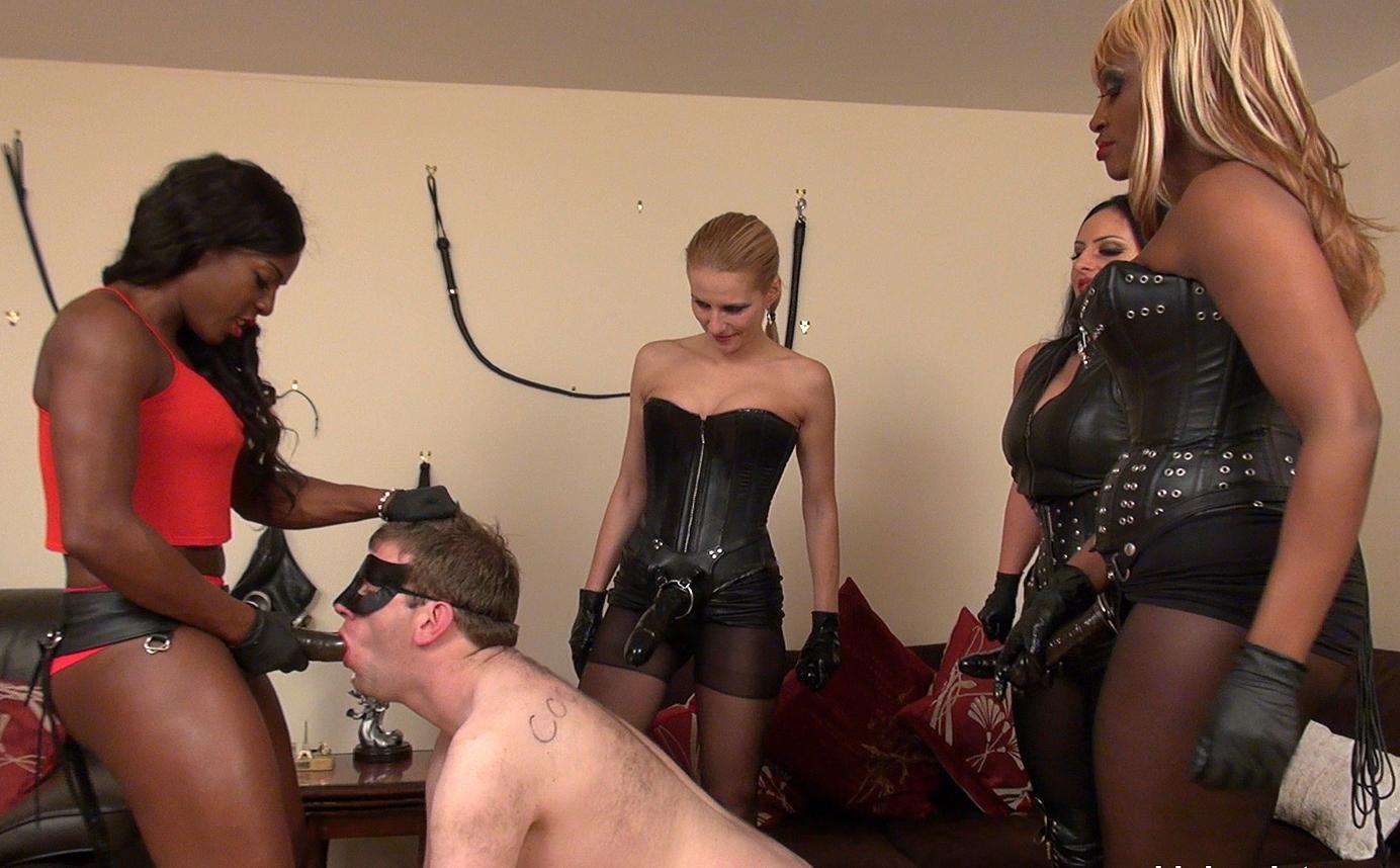 Black femdom mistress pony slave gallery