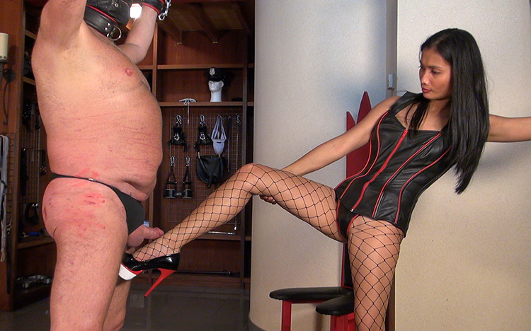 Fishnet Pantyhose CBT Mistress
